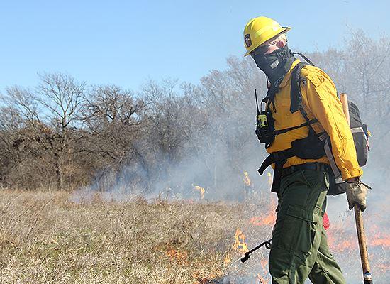 Controlled burn at park